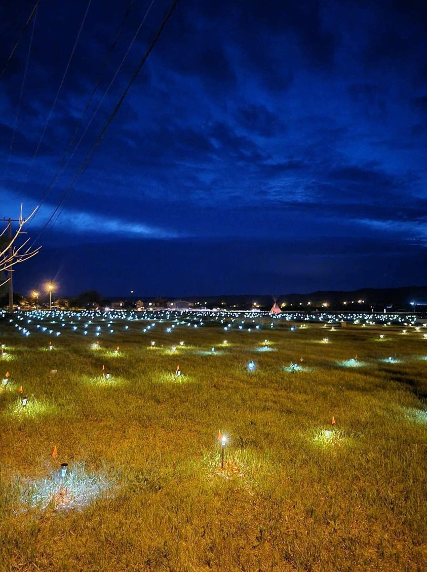 751 Lights Residential Victims