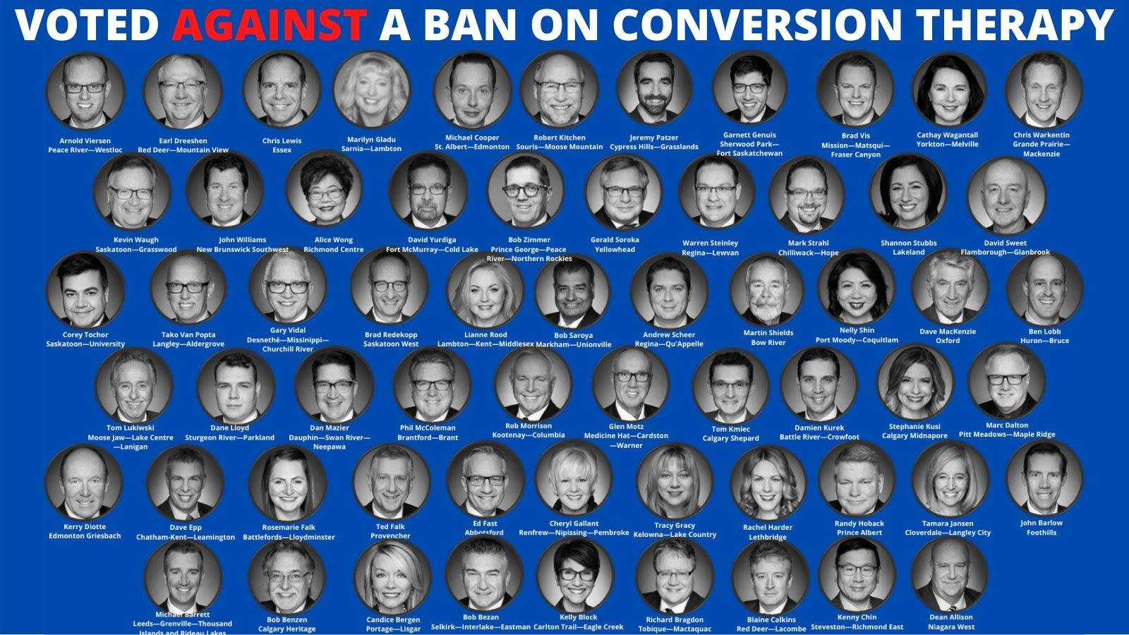 Cons vote against Conversion Therapy